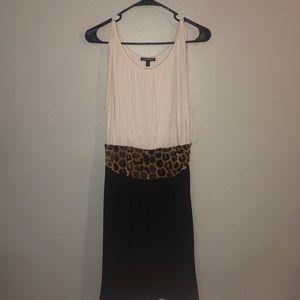 Express Color Block Dress with Leopard Print Waist